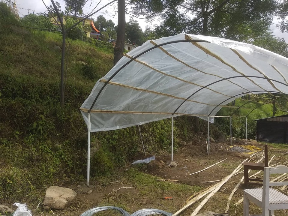 Cultivating Community: We helped build a Greenhouse!